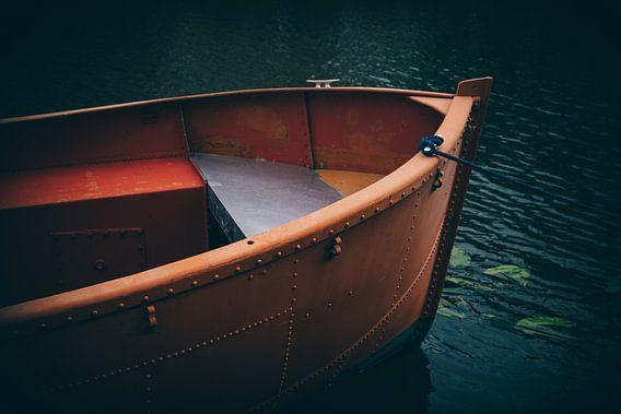 Boat van felipe espinosa