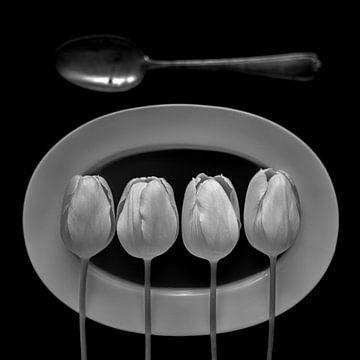 Stilleben mit weißen Tulpen in Monochrom von Jenco van Zalk