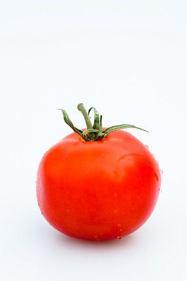 tomaat van Geertjan Plooijer