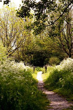 De weg naar rust... von Corine Harkes