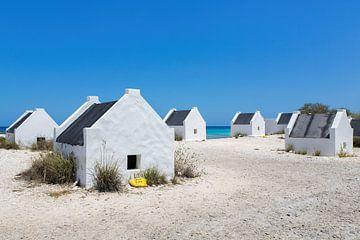 Gruppe von weißen Sklavenhäusern an der Küste der Insel Bonaire von Ben Schonewille