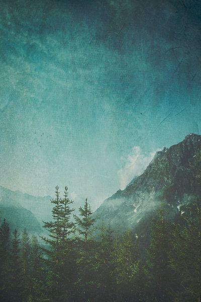 Misty Wilderness - Alpine Valley in Italy van Dirk Wüstenhagen