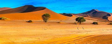 Entlang der roten Dünen in Sossusvlei, Namibia von Rietje Bulthuis