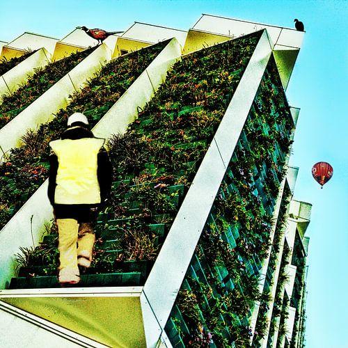 Climbing the building like Escher