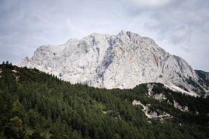 Ronde berg in Nationaal Park Triglav van Youri Zwart