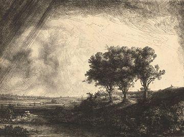 Die drei Bäume, Rembrandt van Rijn