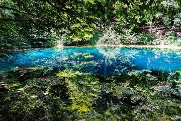 Wasserquelle Blautopf von Oguz Özdemir