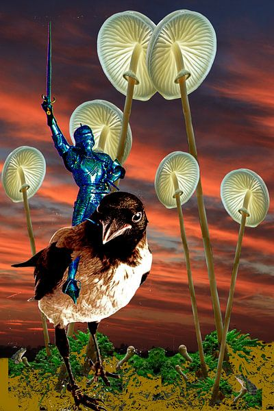 Riding the Crow van Terra- Creative