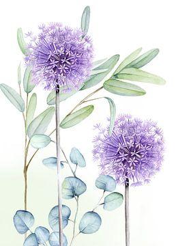 Eucalyptus alliumbollen van Geertje Burgers