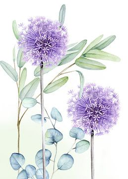 Eukalyptus-Allium-Knollen von Geertje Burgers