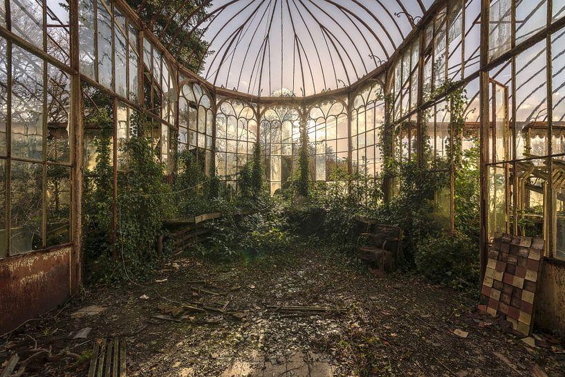 The devil's garden von dafne Op 't Eijnde