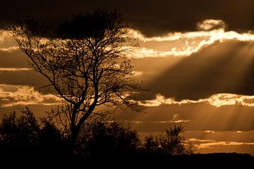 Zonsondergang van Dennis Claessens
