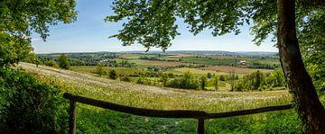 Panorama uitzicht vanuit het Eyserbos van John Kreukniet