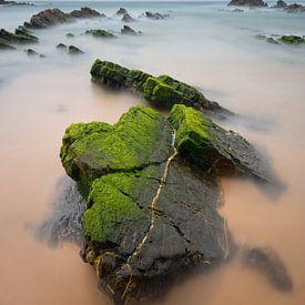 Green Velvet van Rob Christiaans