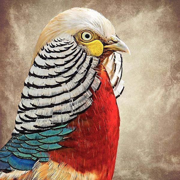 Portret van een prachtige goudfazant van Fotografie Jeronimo