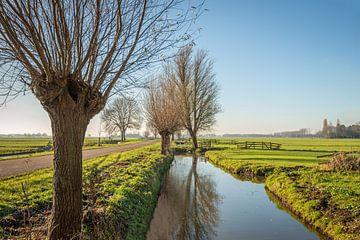Typische niederländische Polderlandschaft in der Region Alblasserwaard von Ruud Morijn