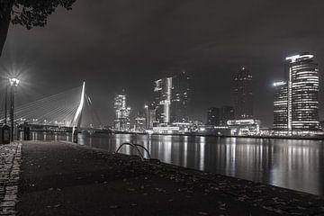 Rotterdam, de poort van Europa. van Harmen Goedhart