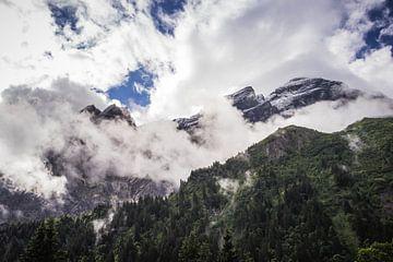 Berggipfel im Schnee von Sasja van der Grinten