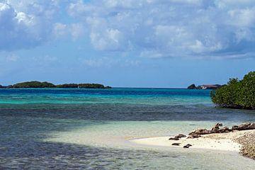 malmok beach aruba von