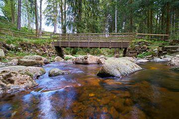 De romantische rivier de Kalte Bode in het Harz Nationaal Park van Heiko Kueverling