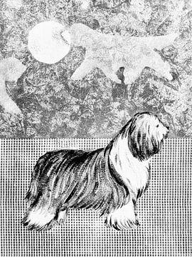 Bearded Collie von Lida Bruinen