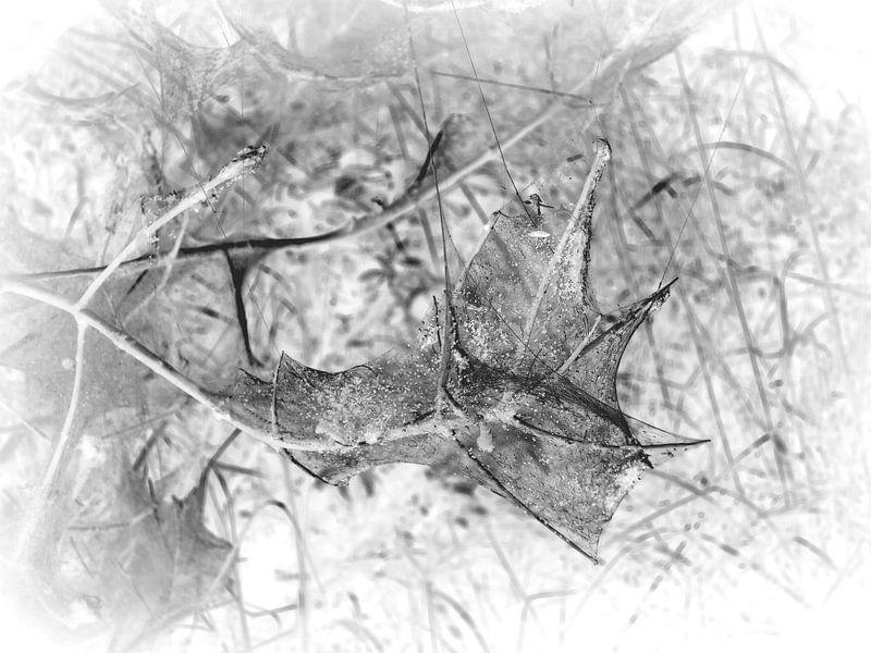 Caterpillar 10 van Jon Houkes