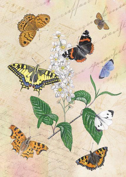 Gewone vogelkers met haar vlinders. van Jasper de Ruiter