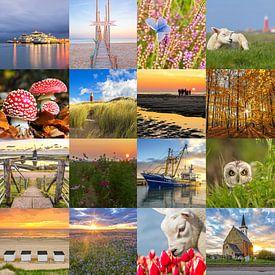 Texel Collage! van Justin Sinner Pictures ( Fotograaf op Texel)