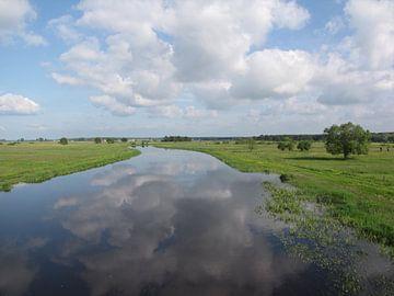Waterview van Nan van Elburg