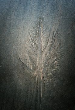 Sand enchantment sur Greetje van Son