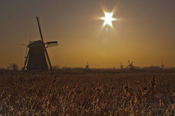 Morning @ Kinderdijk