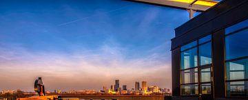 Panorama van Rotterdam RawBird Photo's Wouter Putter van Rawbird Photo's Wouter Putter