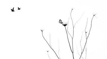 Minimalistisch stilleven met vogels en vlinders von Gerda H.