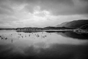 Ruhe am See von Michael Karl Knop