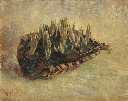 Vincent van Gogh, Mand met krokusbollen van
