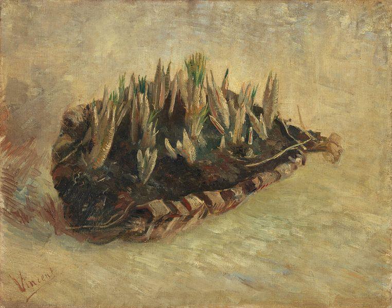 Vincent van Gogh, Mand met krokusbollen