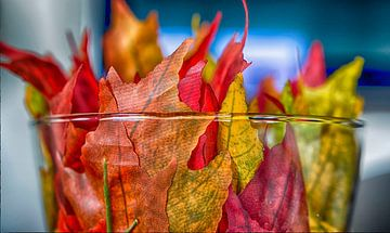 Herfst van Peter Bartelings