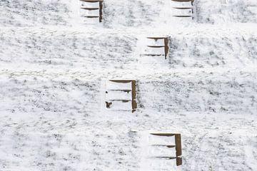 Trappen in de sneeuw van Ingrid de Vos - Boom