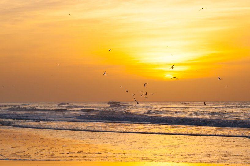 sunset2 van Arjan van Duijvenboden