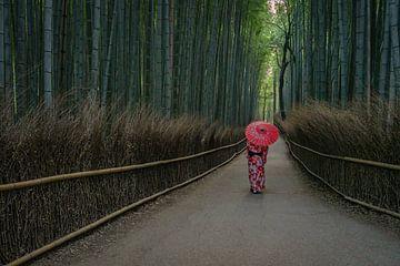 Eine Frau in japanischer Kleidung im Arashiyama-Bambuswald in Kyoto, Japan. von Anges van der Logt