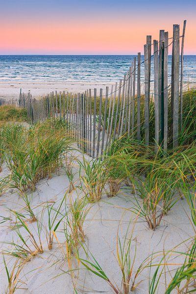 Sand Dune Fences at Cape Cod, Massachusetts, USA van Henk Meijer Photography