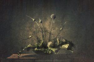 Stilleven groentetuin van Monique van Velzen