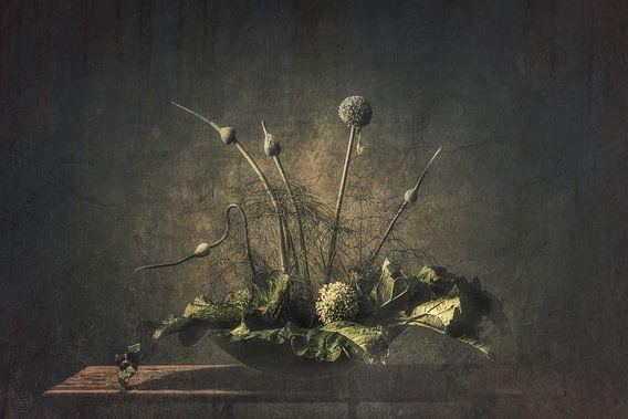 Stilleben Gemüsegarten