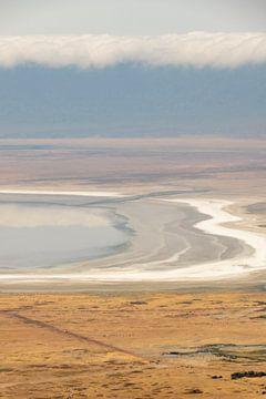 Abstrakte Ebene von Ngorongoro-Afrika von Diane Bonnes
