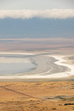 Abstracte vlakte van Ngorongoro Afrika van Diane Bonnes