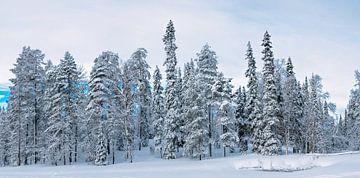 Aan de besneeuwde oever van het meer, Finland van Rietje Bulthuis