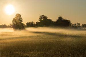 Zonsopgang met mist van