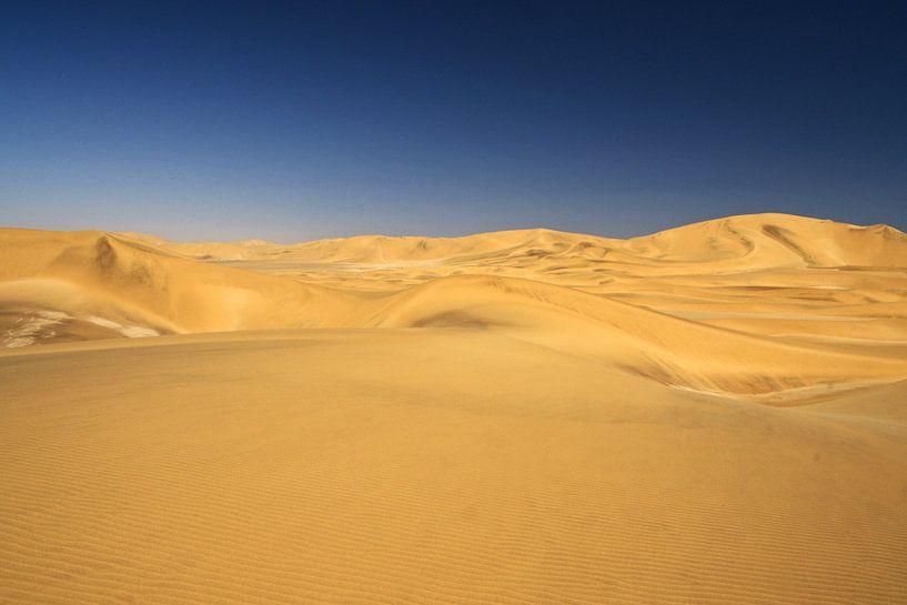 Namib woestijn nabij Swakopmund van Jan van Reij