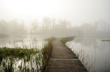 Waterig landschap sur Marian Steenbergen