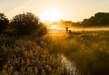 Nebliger Morgen bei Sonnenaufgang von Marcel Kerdijk